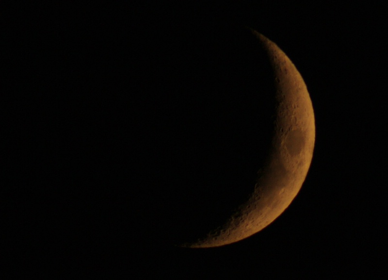 Crescent moon - ID: 7676793 © M.  Martha M. Eid