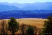 Blue Ridge Mounta...