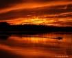 ~Fiery Waves~