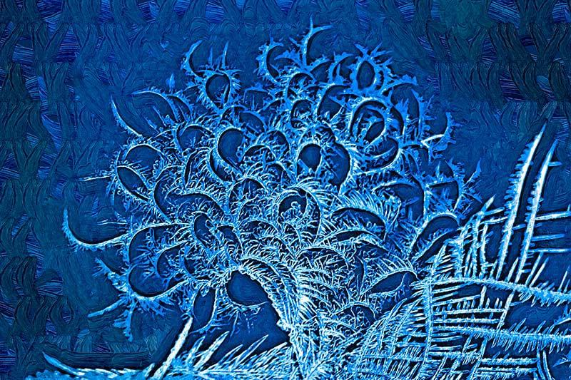Fantasy in Frost