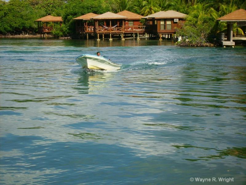 Water Taxi - ID: 7709378 © Wayne R. Wright