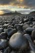 Dunstanburgh Cast...