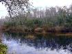 The Serenova Pond