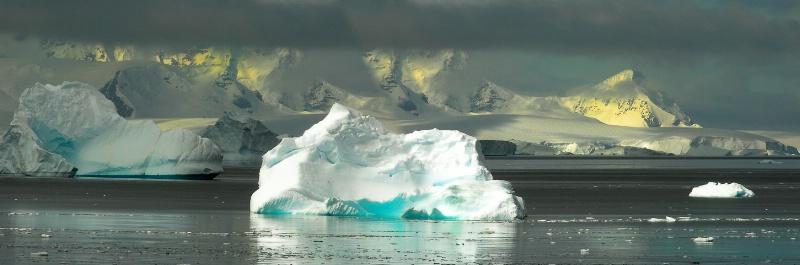 Antarctic Natures Art - ID: 7761423 © Viveca Venegas