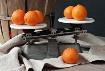Clementine Weigh-...
