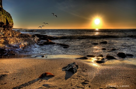 Sunset Flight of the Cove