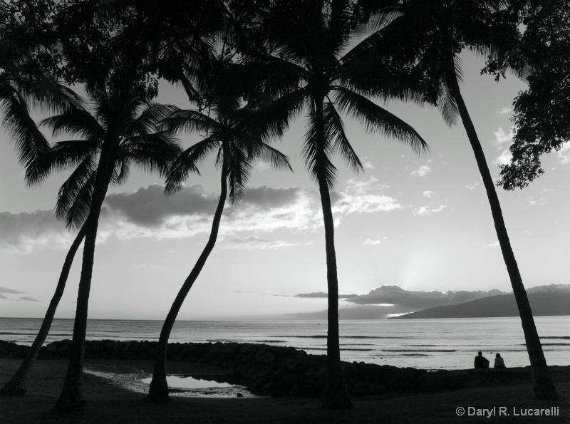 B & W Maui Sunset couple - ID: 7790879 © Daryl R. Lucarelli