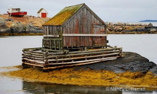Fisherman's Hut, Blue Rocks