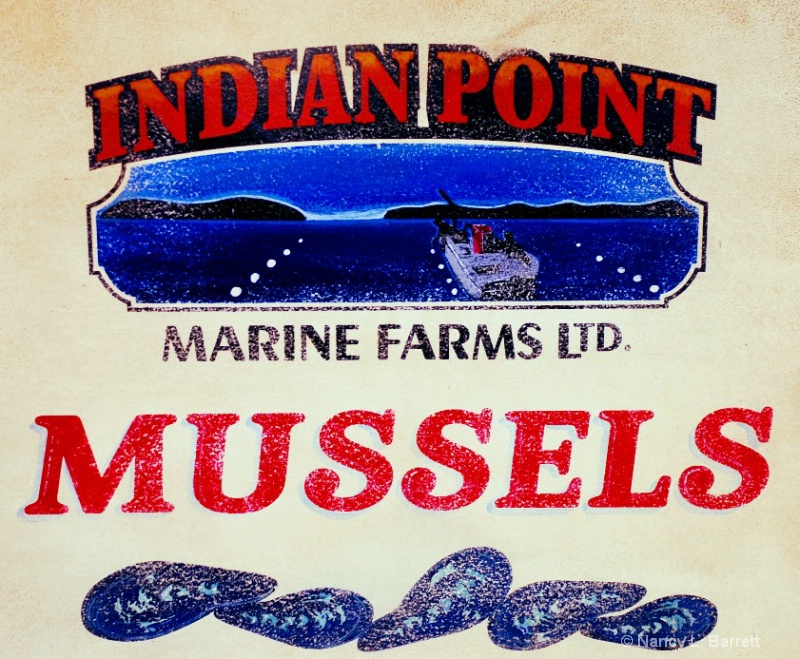 Mussels for Sale