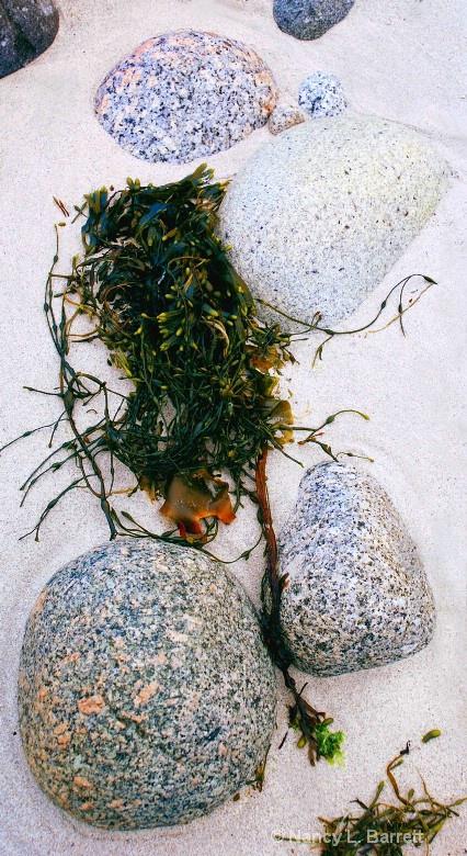 Beachstone Medley