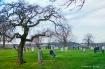 Graveyard on the ...