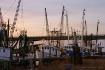 Shrimp Boats On T...
