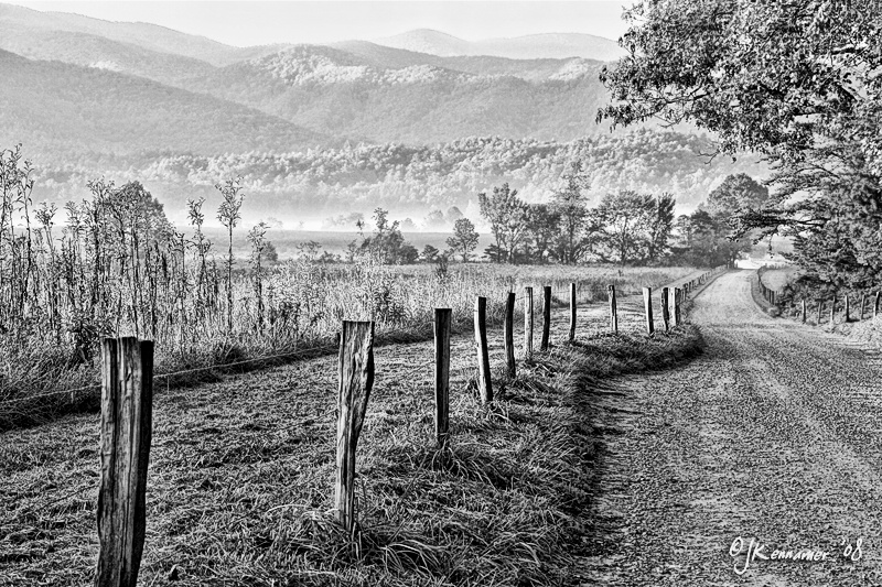 A Cade's Cove Morning