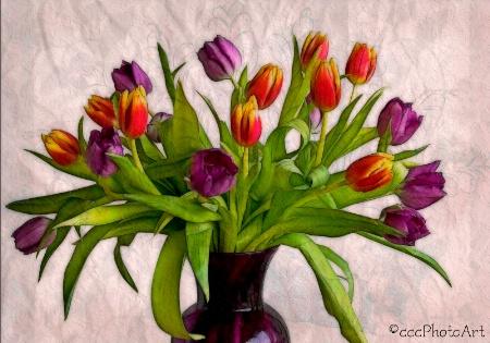 Purple & Tangerine Tulips