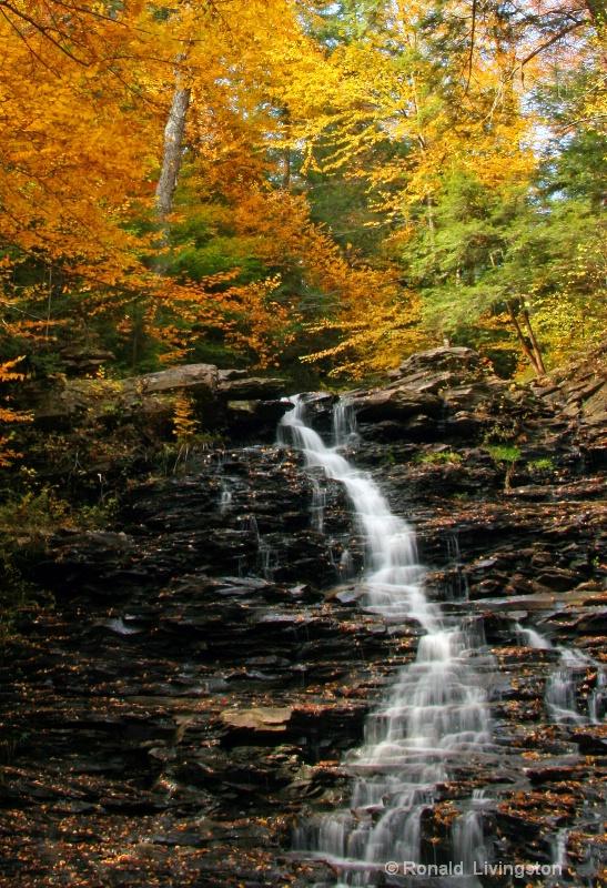 Golden Waterfall - ID: 7867913 © Ron Livingston