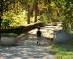 Walking the bridg...