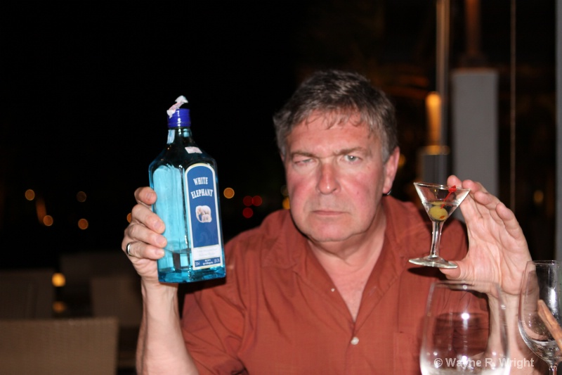 This is not Bombay Sapphire - ID: 7928675 © Wayne R. Wright