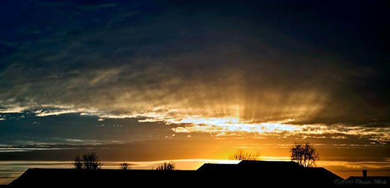 Evening Glory 2