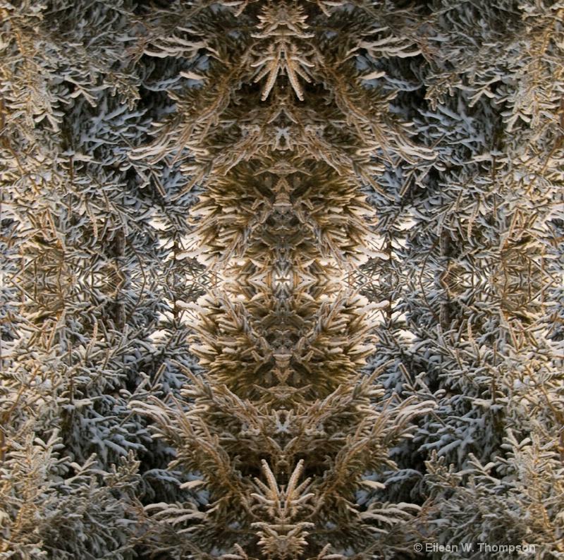 Mirrored Evergreens