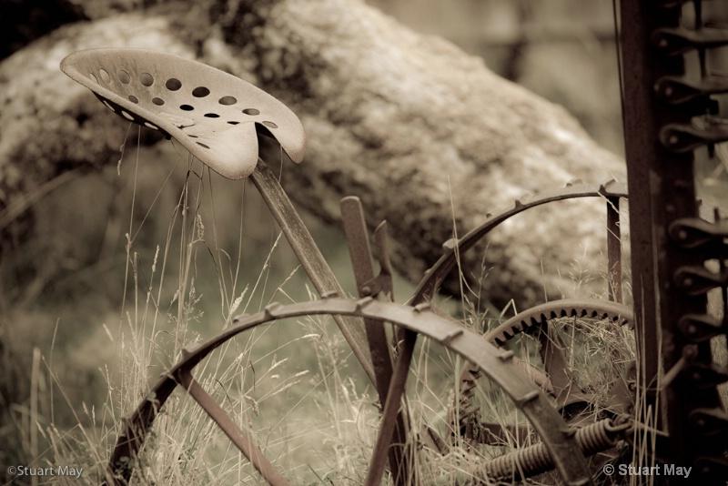 quinault rains-10 - ID: 7975670 © Stuart May