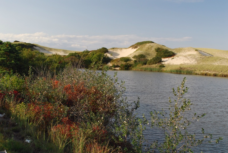 """Pilgrim Lake"""
