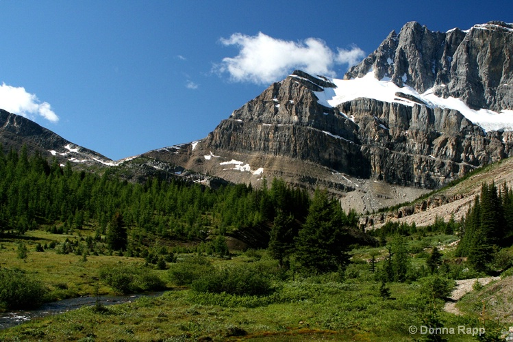 meadow to packers pass - ID: 8003996 © Donna Rapp