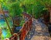 Pathway to Paradi...