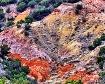Palo Duro Canyon,...