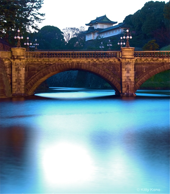 Shimmering Mote at the Imperial Palace - ID: 8095597 © Kitty R. Kono