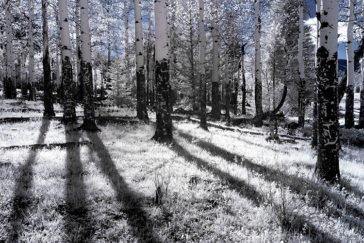 Rocky Mountain National Park (infrared)
