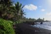 Hana Bay Palms