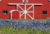 Pure Texas Countr...