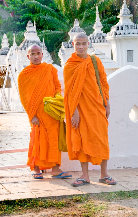 Buddhist Monks at Chiang Mai - ID: 8169418 © Carmen B. Sewell