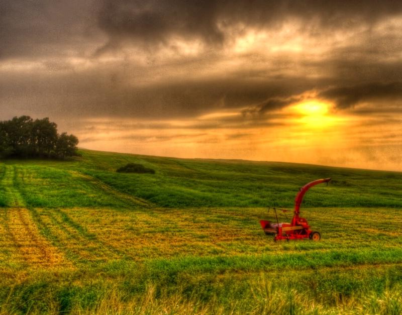 April Rain & Green Fields