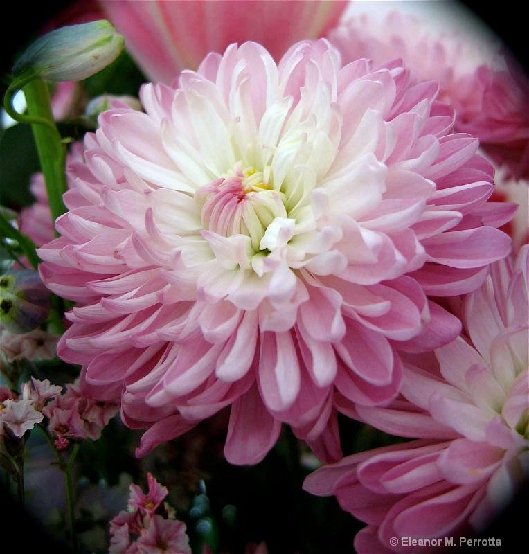 """""""Birthday Bouquet"""""""
