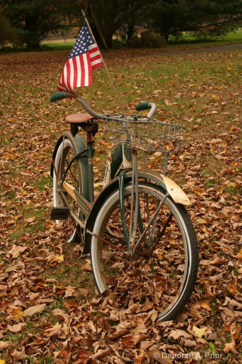 Autumn Ride - ID: 8230626 © Deborah A. Prior
