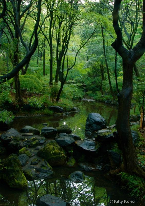 Stream at Arisugawa - ID: 8241865 © Kitty R. Kono