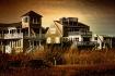 Cape Cod Gold (5/...