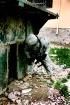 A Soldier's W...