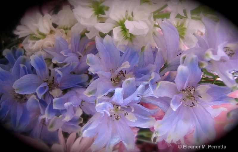 """'Spring's Awakening"""""""