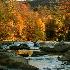 © John Singleton PhotoID # 8313308: Fall on the Williams River - Horizontal
