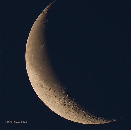 Lauren's  Moon