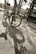 Bike Shadow - tak...