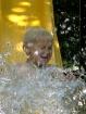 johnny splash