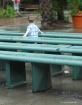 Rainy Day Benches...