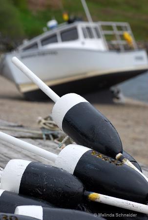 Beach Buoys