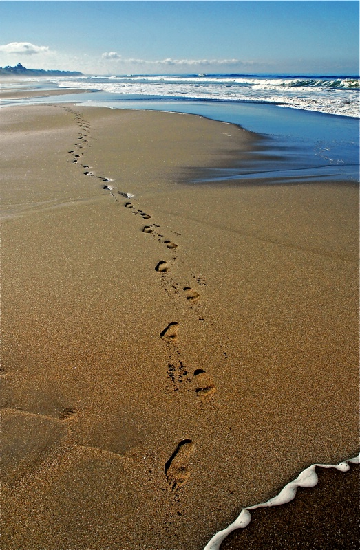 Solitary Walk II