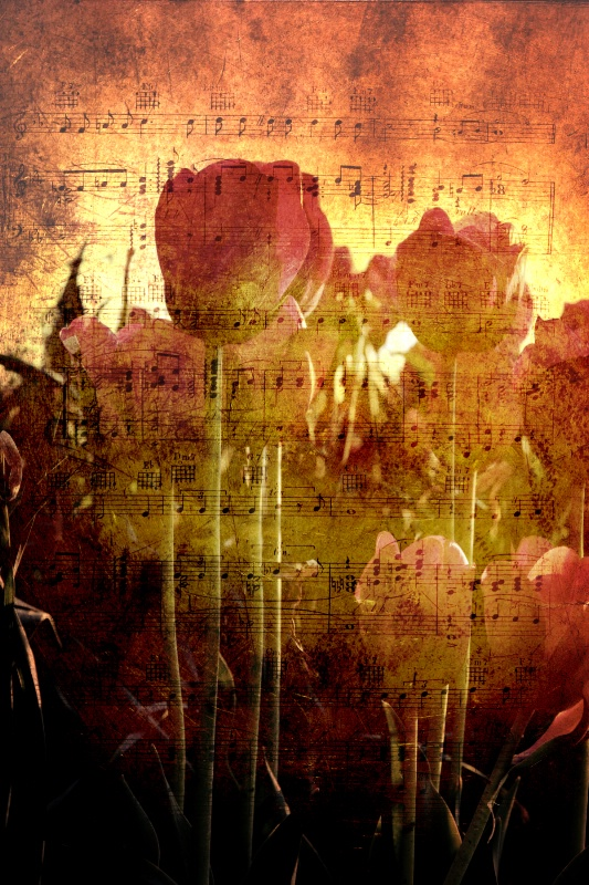 Springtime Sonata