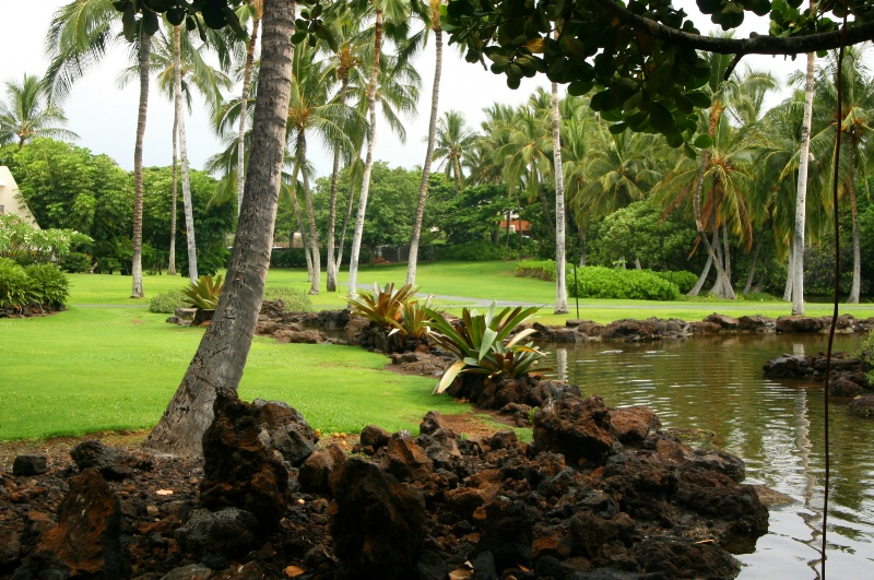 ~ Tropical Retreat ~ - ID: 8458040 © Trudy L. Smuin