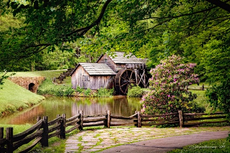 Early Morning at Mabry Mill